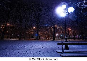 snow-covered, párizs, fény, liget, utca lámpa
