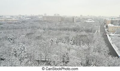 Snow-covered park in the center of Minsk. Belarus