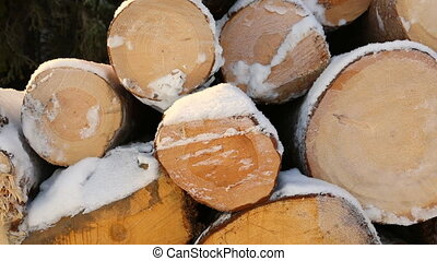 Snow-covered pile of logs