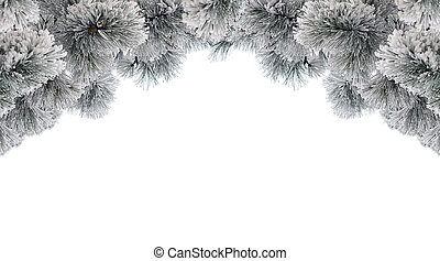 Snow-covered pine branches frame on white background