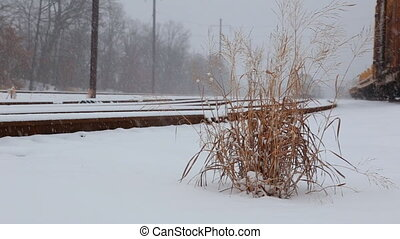 Snow covered railway crossing Railway covered with snow
