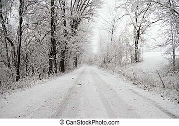 Snow Covered Road - A snow cover road in a very snow covered...