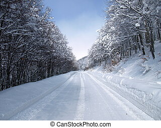 Snow covered road with car tracks in winter forest