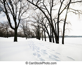 Snow covered trail. - Snow covered trail with footprints at...