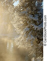 Snow-covered tree on the shore of Lake Baikal