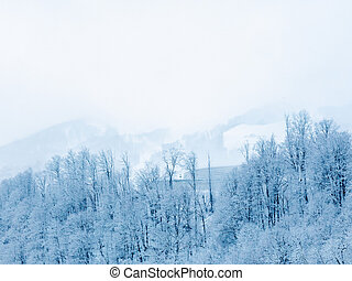 Snow-covered trees against the backdrop of misty mountain peaks and white cloudy sky