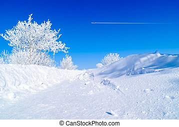 Snow-covered trees - snow-covered rural roads blocked...