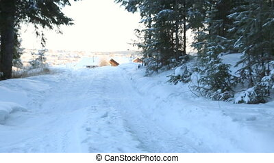 Snow-covered winter forest road