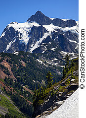 Snow Evergreens Artist Point Mount Shuksan Mount Baker Highway Snow Mountain Washington State Pacific Northwest
