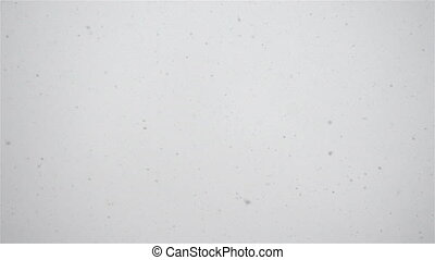 Snow falling, blizzard.