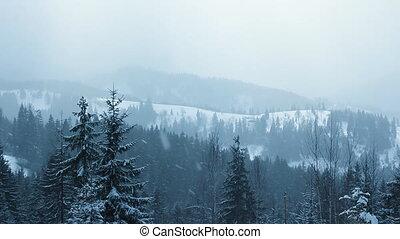 Snow Falling in Carpathians (Full HD)