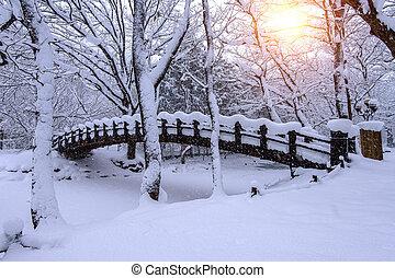 Snow falling in park and a walking bridge in winter, Winter...