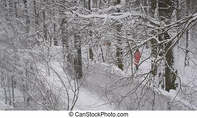 Snow falling in wintry forest with mother and child walking...
