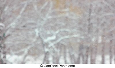 Snow falling on blurred winter landscape.