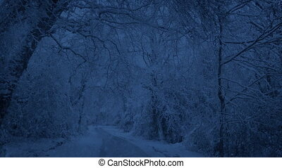 Snow Falling On Park Road In The Evening