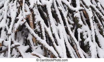 Snow falls in slow motion on background of heap of tree...