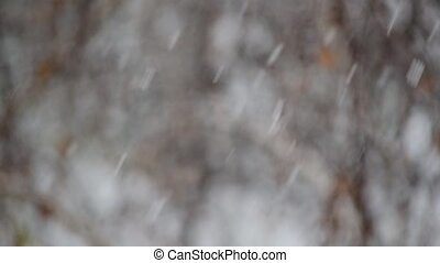 Snow falls on blurry grey and white background