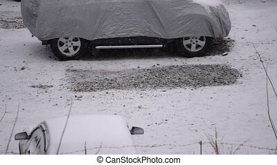 Snow falls on cars parked on parking lot