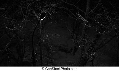 Snow falls on the background of a lantern