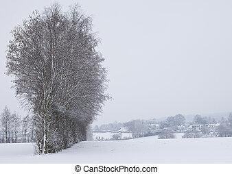 Snow Fields in Maidstone