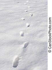 snow foot prints