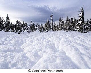 Snow Footprint