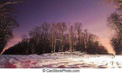 snow., forest., lapses., winter tijd, partij, nacht