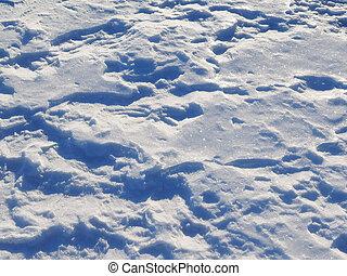 snow., fundo