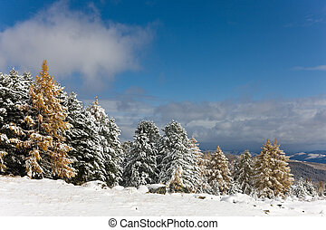 snow in mountains