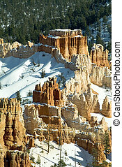 Snow in the Bryce Canyon