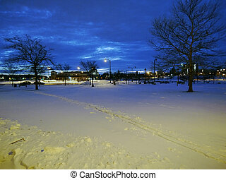 Snow in the Park at night