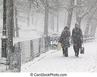 Snow in the park - Heavy snow in Central Park, Manhattan, ...