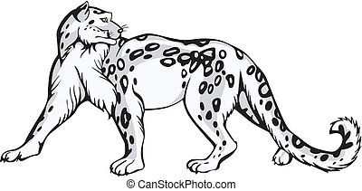Snow leopard design - Graceful snow leopard turned round his...