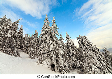 Snow Mountain - Snow Mountain. mountains under snow in the...