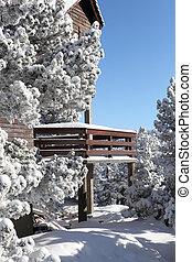 Snow on a chalet