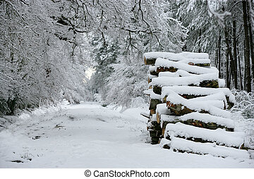 Snow on a pile of logs