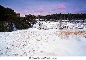 snow on dunes at sunset