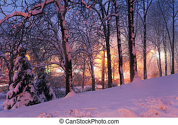 snow on winter trees and city lights in haze