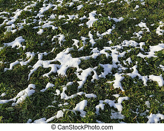 snow residue on a green meadow in winter in Germany