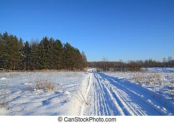 snow road near pine wood