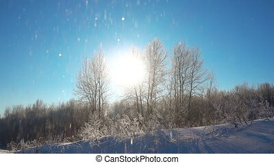 Snow shines against blue sky at beautiful sunny day.