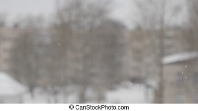snow slowly falls on a blurred background