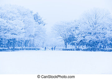 Snow, snow scene, covered with snow