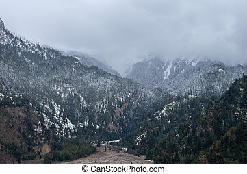 Snow Storm in the Mountains