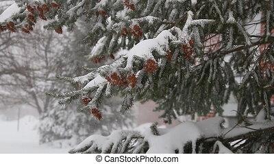 snow storm jonas snowstorm - highway people road wilderness...