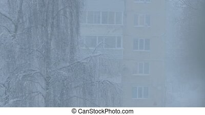snow storm outside