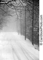 Snow Storm - Snow covered country road during a snow storm