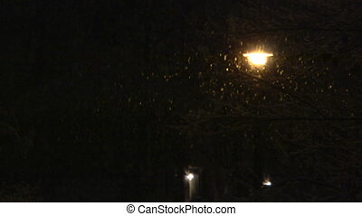 snow street light - Snow falling in front of a street light...