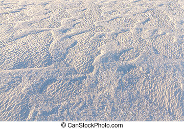 snow surface, winter