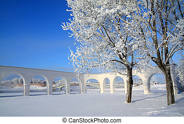 snow tree near ancient wall